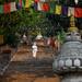 COVID-19: Nepal