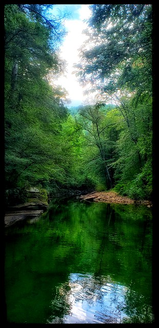 It's a green, green world...