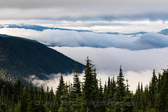 Valley Clouds below Mount Adams, Viewed from Goat Rocks Wilderness