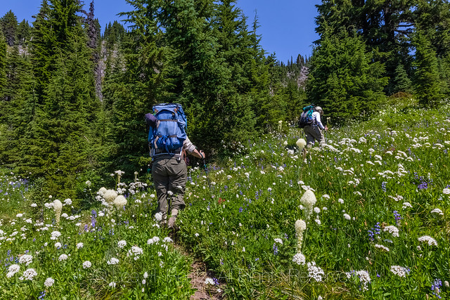 Hikers in the Goat Rocks Wilderness