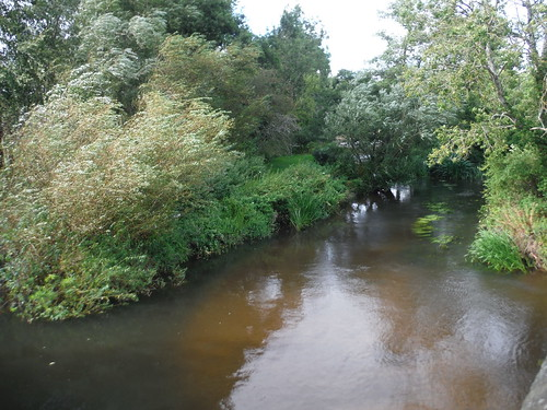 River Rother, Lower Fittleworth SWC Walk 39 - Amberley to Pulborough
