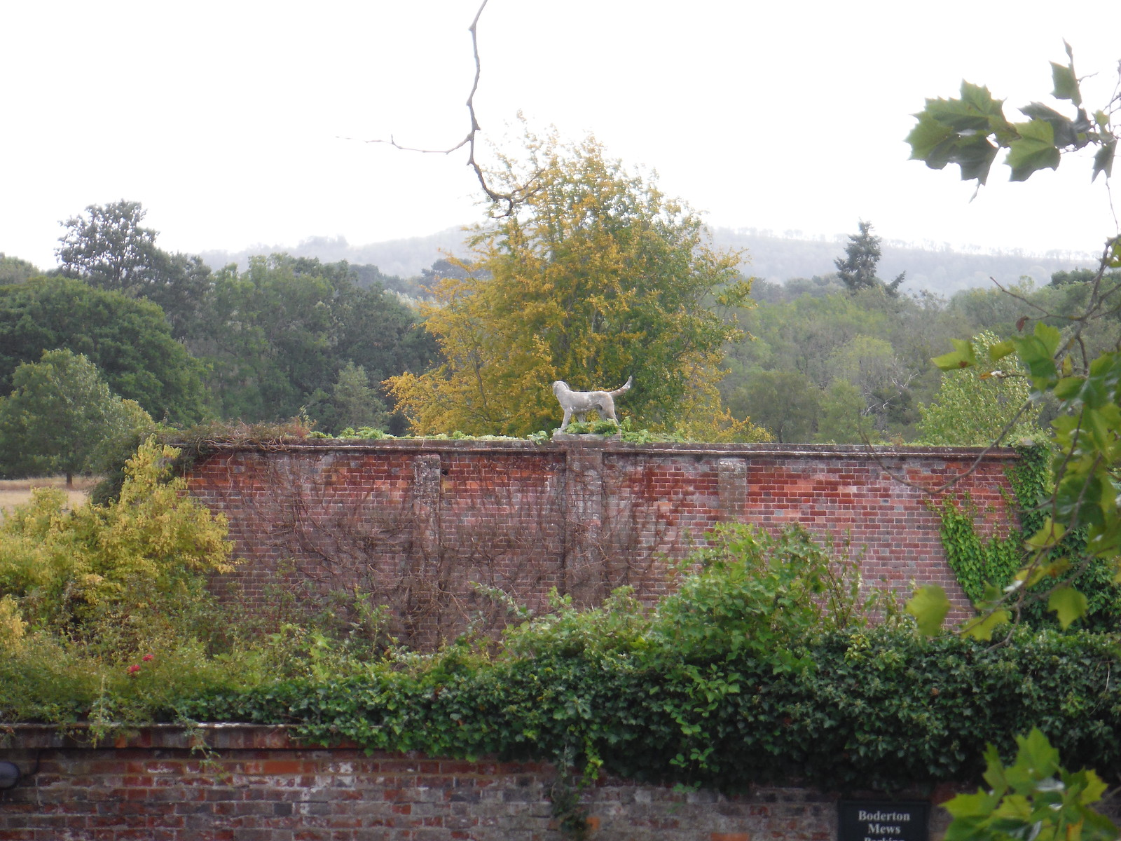 Dog Sculpture on Wall: Burton Park living quarters SWC Walk 39 - Amberley to Pulborough
