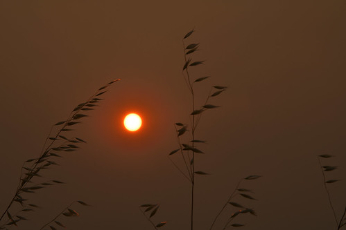28300f3556g climatechange fires california sunset smoke