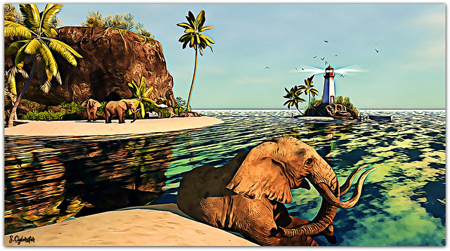 Tusks In Paradise
