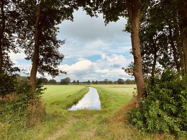 Drents-Friese Wold (Drenthe, The Netherlands 2020)