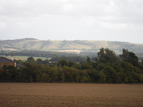 South Downs Views from Pulborough Plantation SWC Walk 39 - Amberley to Pulborough