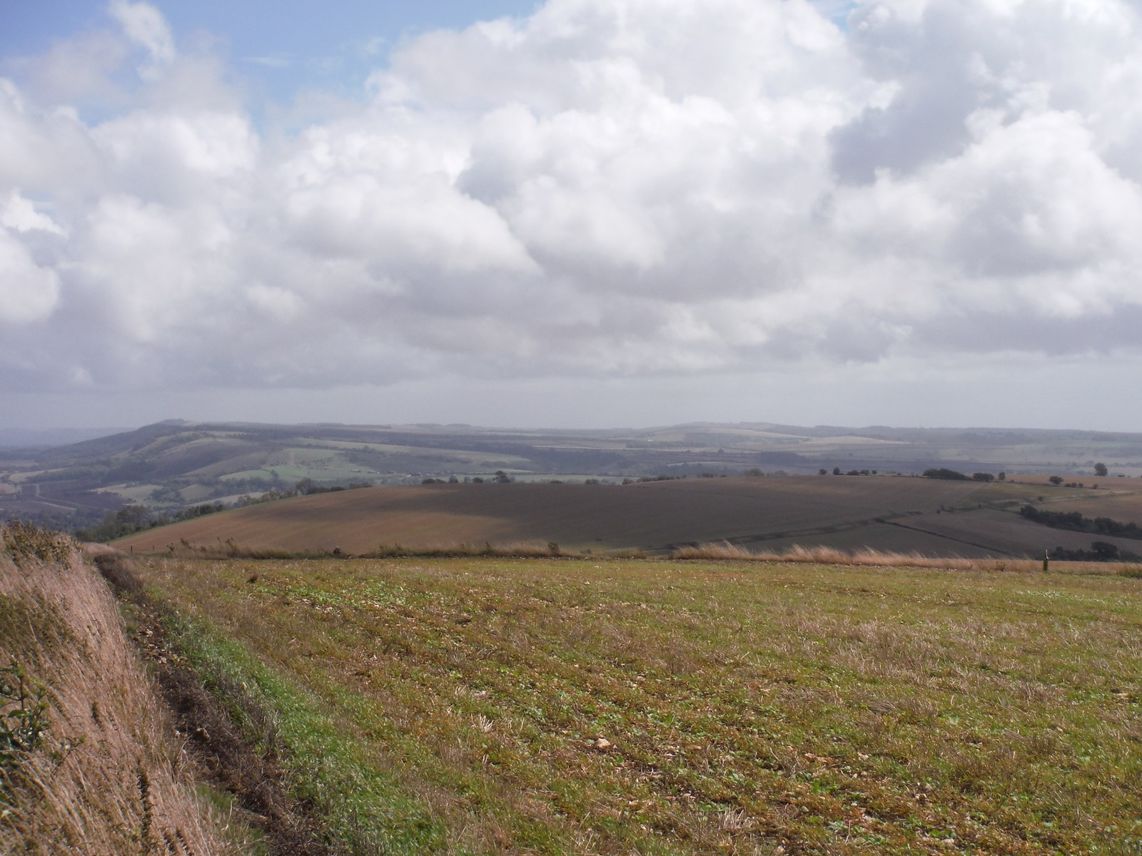 Backview from SDW along the South Downs SWC Walk 39 - Amberley to Pulborough