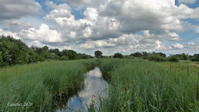 Natuurgebied de Groene Grens - Veenendaal