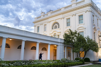 President Trump in the Colonnade