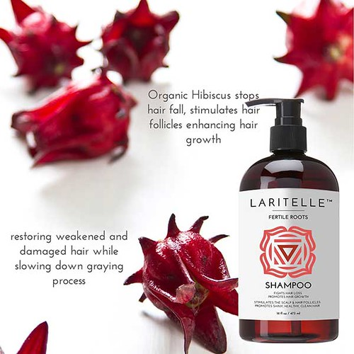 Laritelle Fertile Roots Organic Ayurvedic Shampoo | Hairloss Cureguide