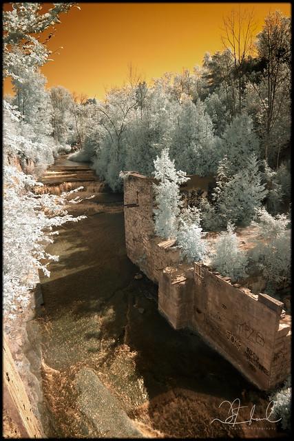 Credit River Upstream at Cataract Falls