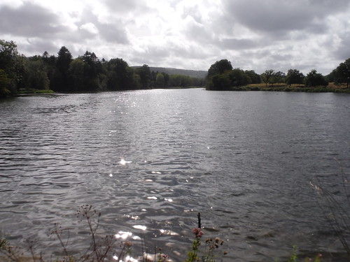 Chingford Pond SWC Walk 39 - Amberley to Pulborough