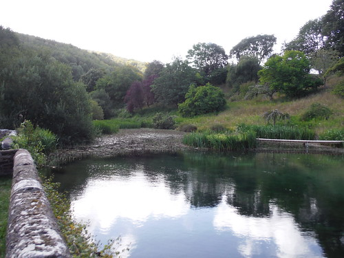 Duncton Mill Pond SWC Walk 39 - Amberley to Pulborough