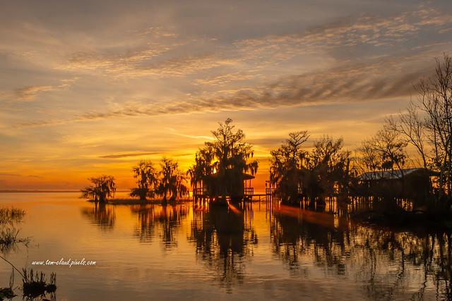 Stilt Cabins and Cypress Sunrise