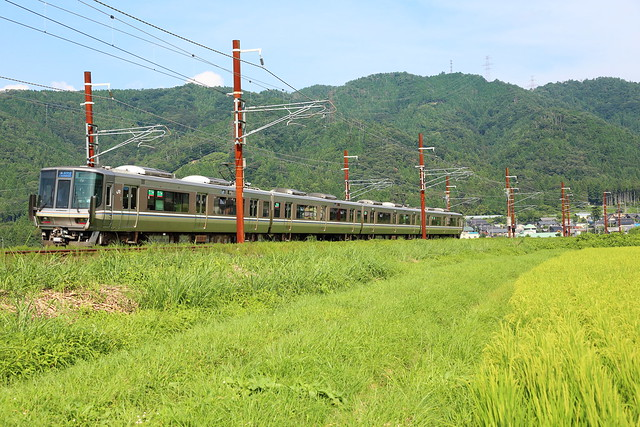 Rapid train running through the green fields