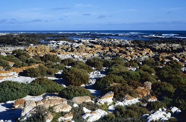 Cape Agulhas National Park
