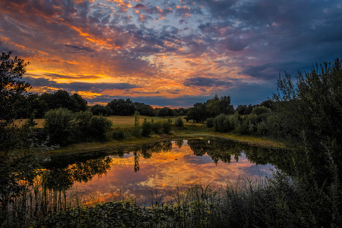 pond thurnham summer sunset topazclarity water maidstone reflections sonyrx100m3 lake bearstedgolfcourse kent tree clouds england