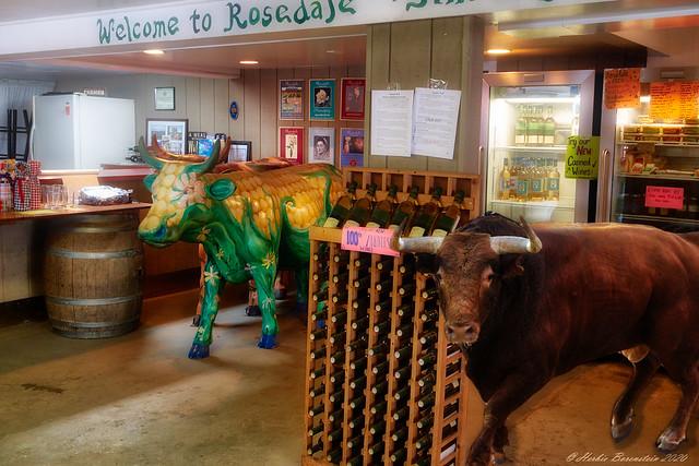 Bulls in a Vineyard Shop!