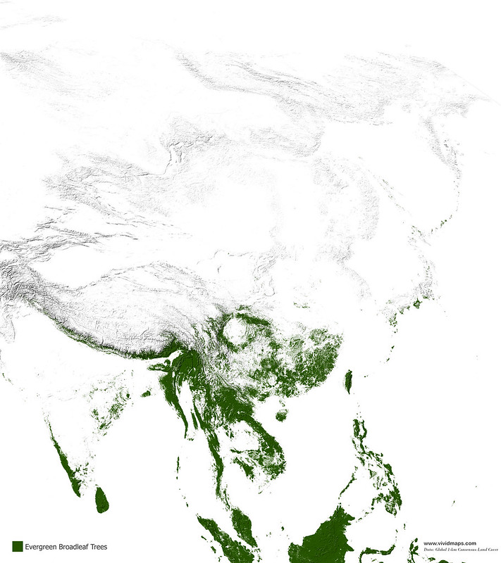 Map of Evergreen broadleaf forests of Asia