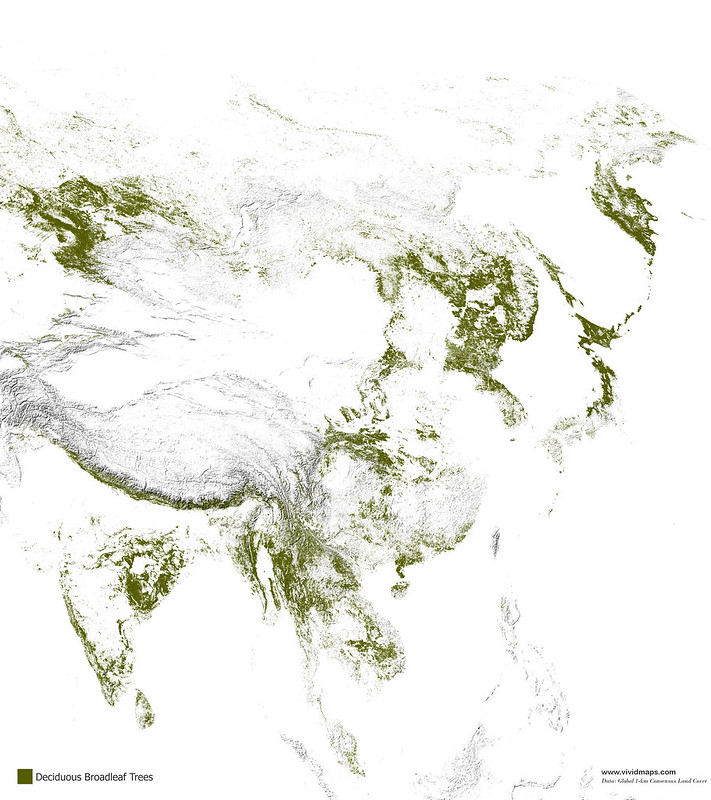 Map of deciduous broad-leaf forests of Asia