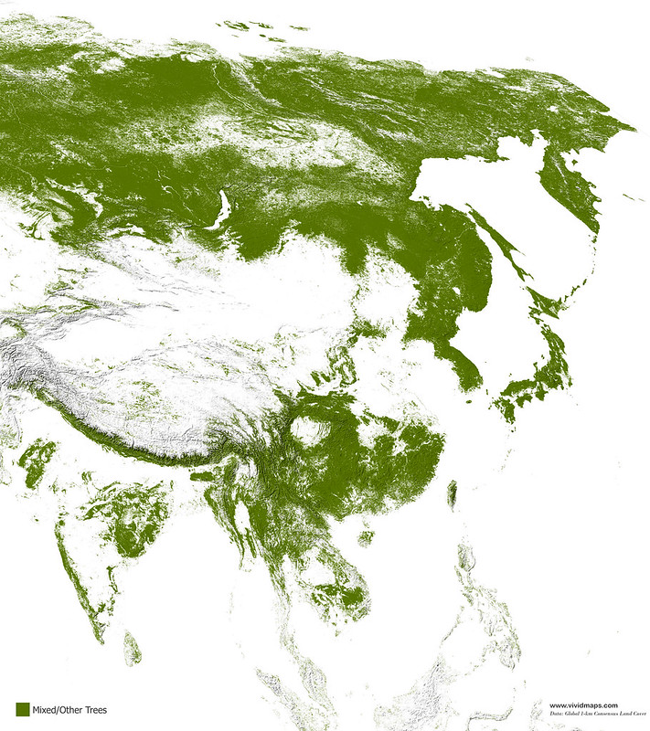 Map of Asian mixed forests