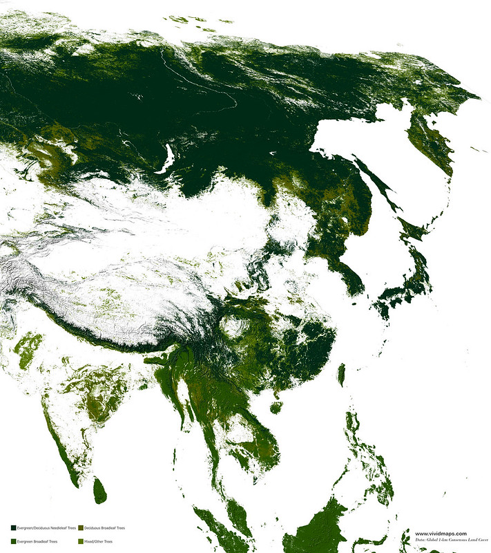 Map of Asian forests