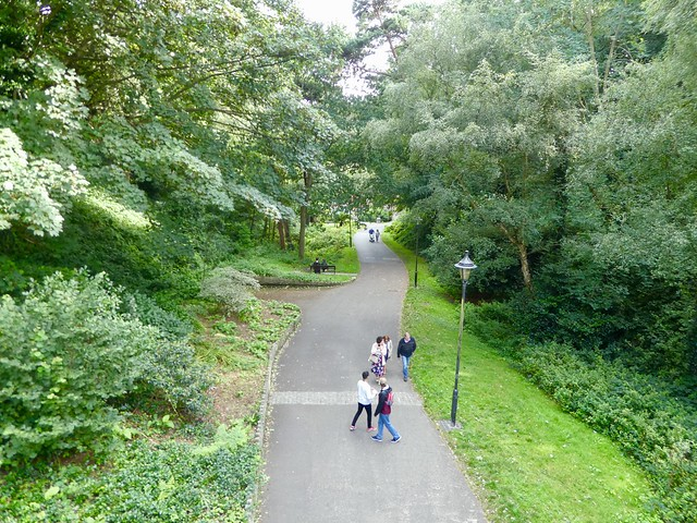 Woodland walks in Boscombe Chine Gardens