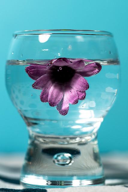 Verrine fleurie.