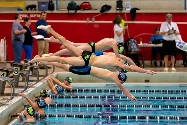 Inspiration för pool (25 bilder)