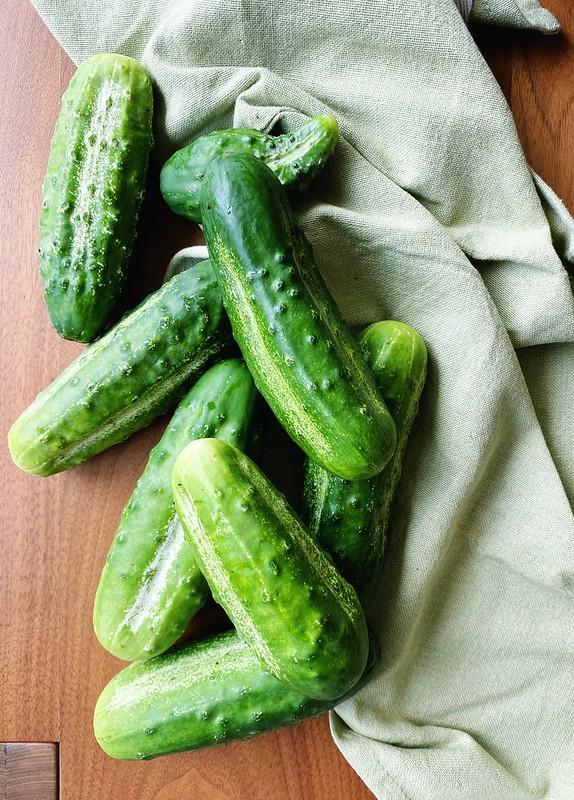 Fresh-Picked Pickling Cucumbers