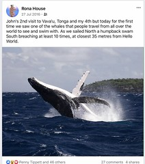 20160727 Whale breaching