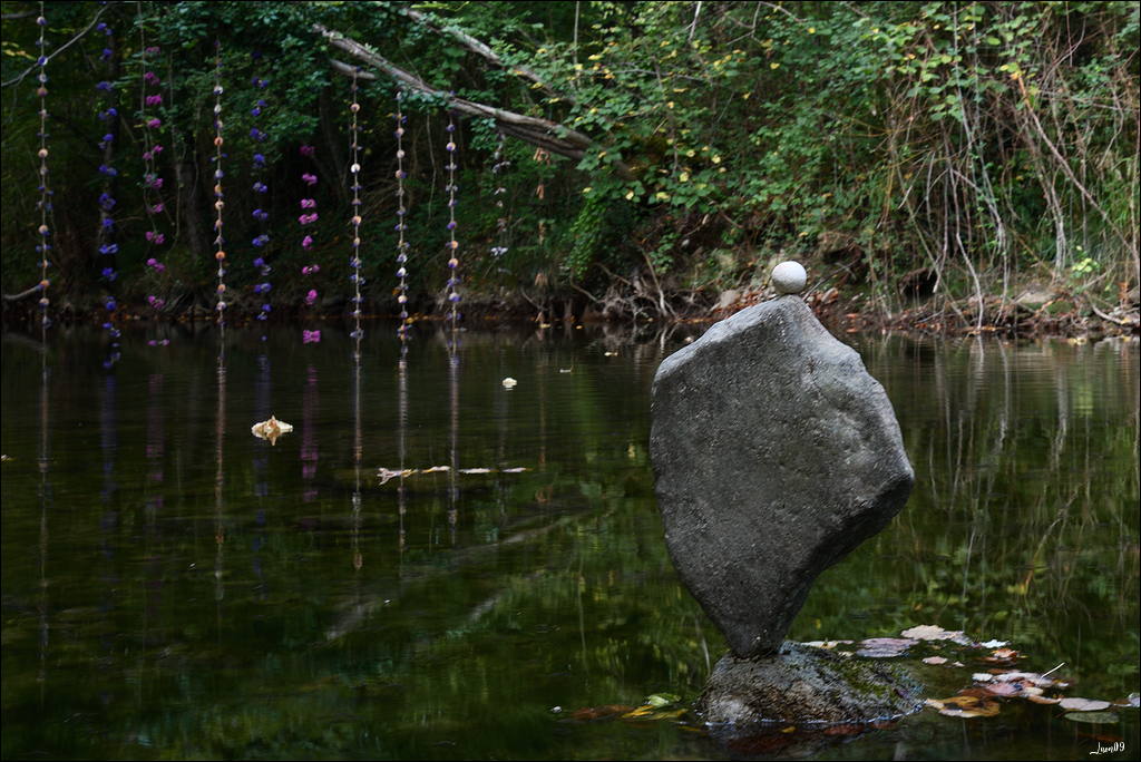 Jardin extraordinaire, le rêve continue 50265880453_89f830b582_o