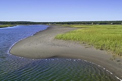 The Salt Marsh Trail