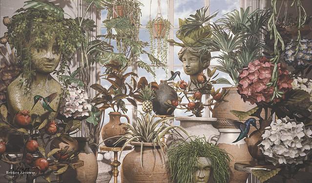 PLANTS #347