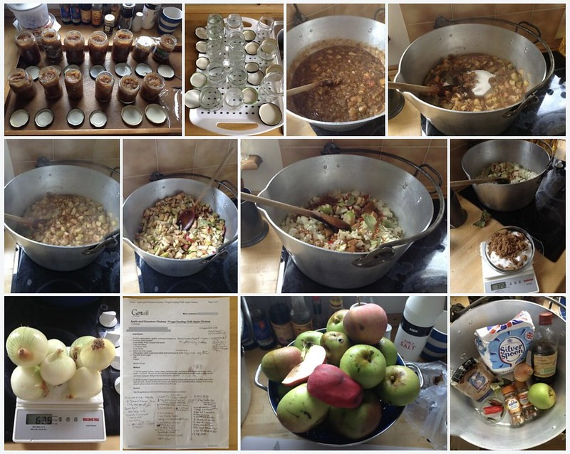 Frugal Feeding Chilli Apple Chutney: Montage
