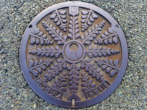 Ogori Fukuoka, manhole cover (福岡県小郡市のマンホール)