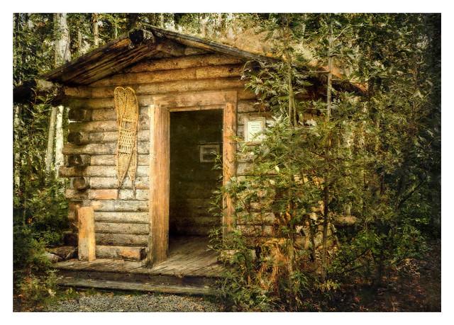 Trailside Cabin Near Fairbanks