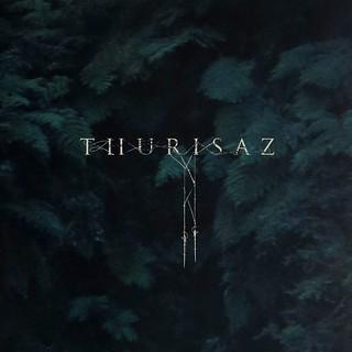 Albrum Review: Thurisaz - Re-Incentive