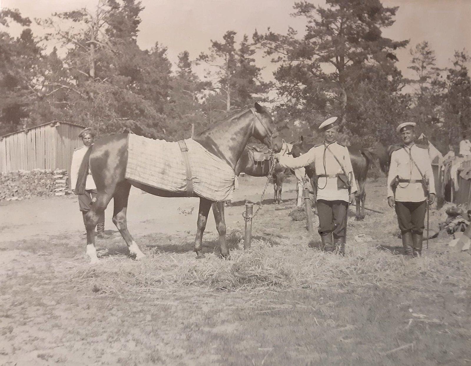 08. Два нижних чина держат лошадь под уздцы