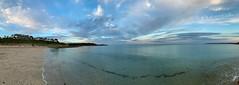 Gyllyngvase Beach Pano