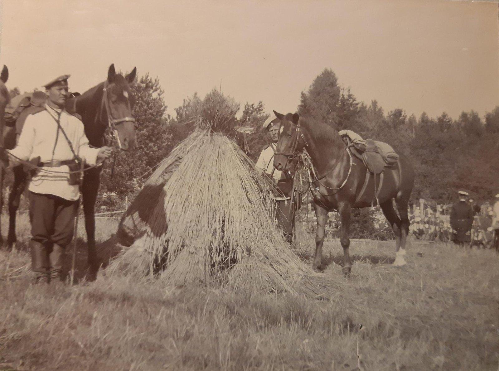 09. Два нижних чина с лошадьми у стога сена