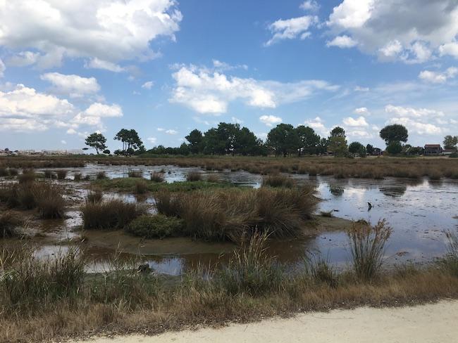visiter-le-bassin-darcachon-a-velo-que-voir-quoi-faire-city-guide-tourisme-voyage-blog-la-rochelle-29