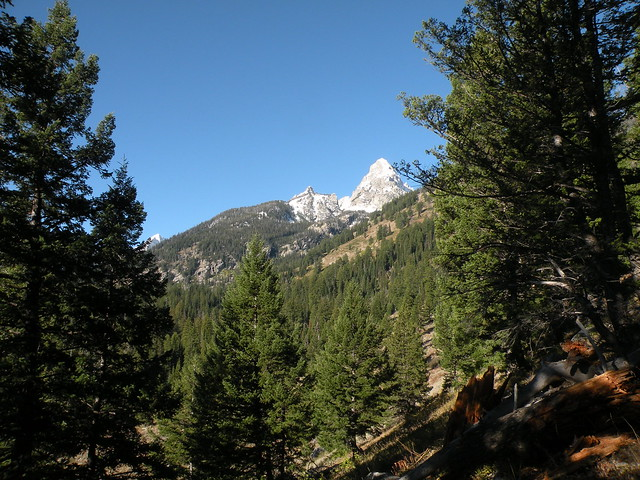 Trail to Amphitheater and Surprise Lakes