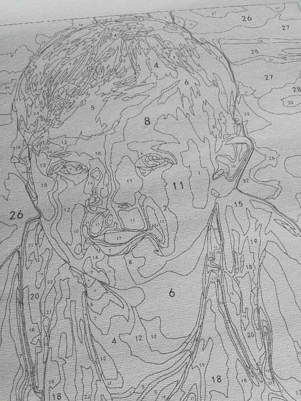 Portrait Paint by Number 7