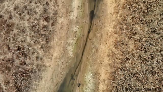 Remanso Valerio - Isla de los Mastiles - Canal Kayakista