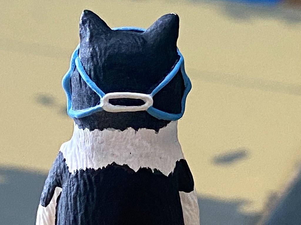 奇譚俱樂部【坐著的奇怪貓】口罩貓、吐司貓將於明年2月爆笑參戰?!