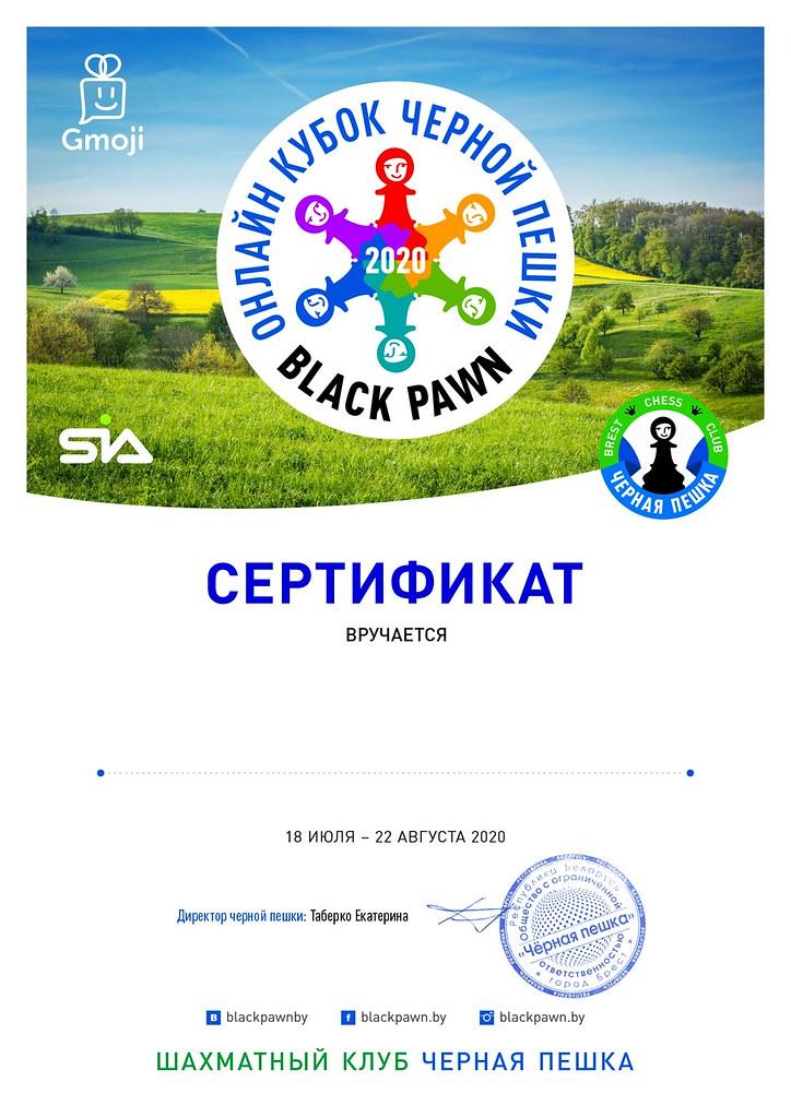 Онлайн Кубок 2 СЕРТИФИКАТ