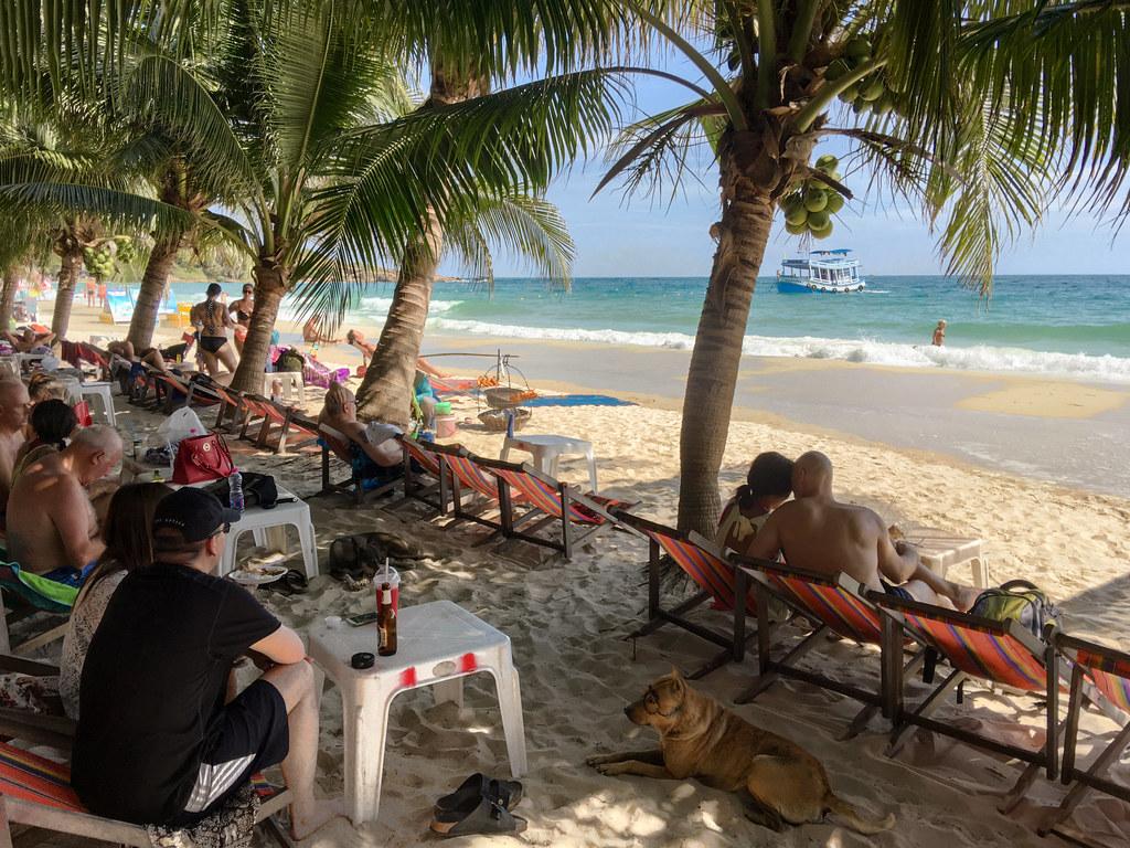 Enjoying the beach under the coconut trees shade