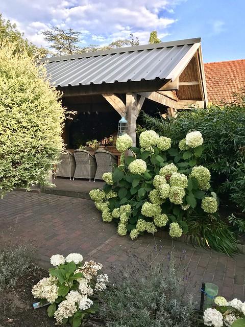 Kapschuur landelijke tuin witte hortensia's