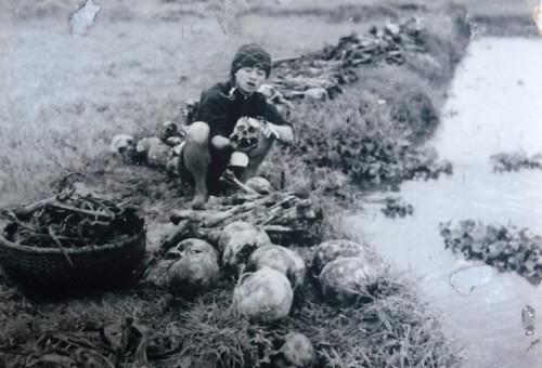nandoi_atdau_1945_03